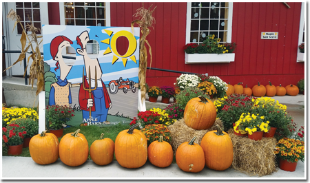 Fall at The Apple Barn & Country Bake Shop